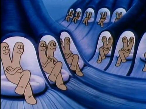 leniwe_chromosomy